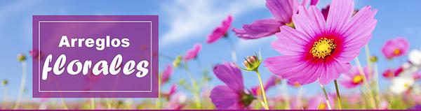 floristeria yuca